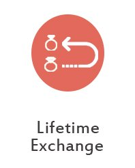 lifetime_exchange
